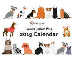 Parnell Perfect Pets 2019 Calendar
