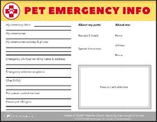pet emergency form sample view