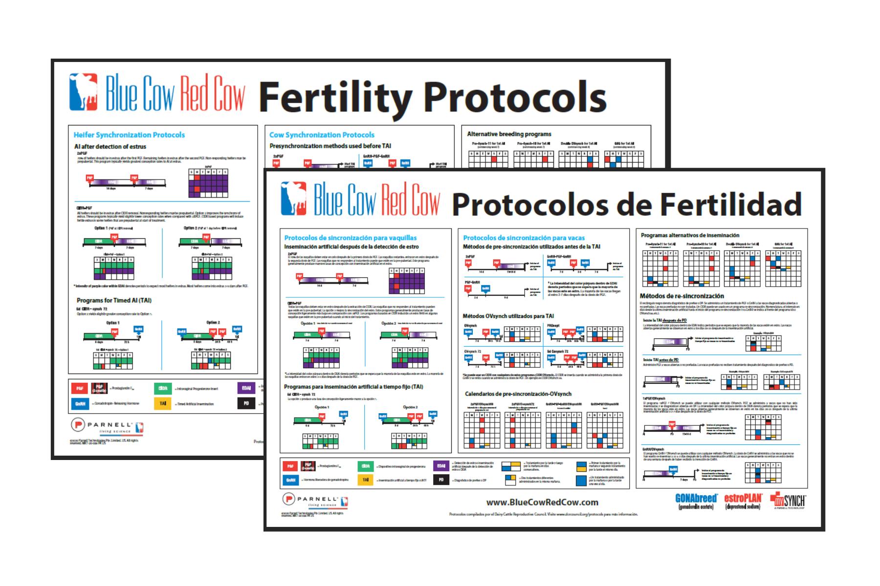 Fertility Protocol Poster